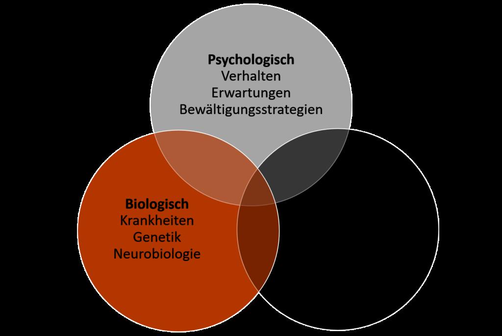 Im biopsychosozialen Modell (z.B. der Schizophrenie) vereinen sich biologische Faktoren (Krankheit, Genetik, Neurologie), psychologische Faktoren (Verhalten, Erwarten, Bewältigungsstrategien) und soziale Faktoren (Lebensverhältnisse, Soziale Netzwerke) bei der Entstehung einer Erkrankung